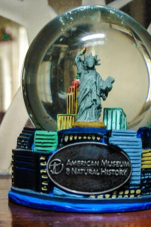 American Musuem of Natural History